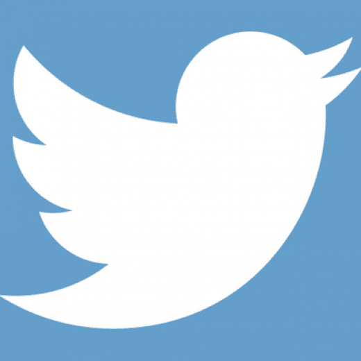 The twitter logo image of a bird