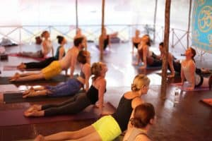 Picture of a yoga class made up primarily of women. They are doing a cobra stretch pose