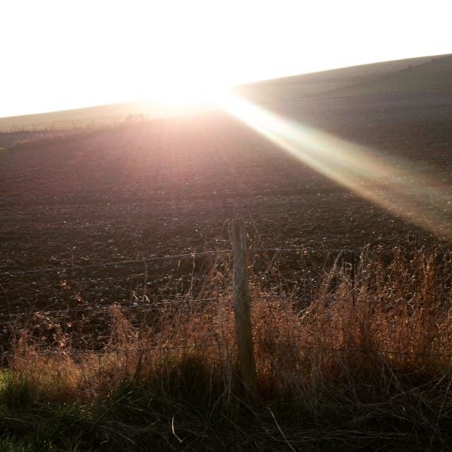 A picture of a barren field with a barbed wire fence in front of it. The sun pokes up in the back of the shot sending flares of sunlight into the East section of the field