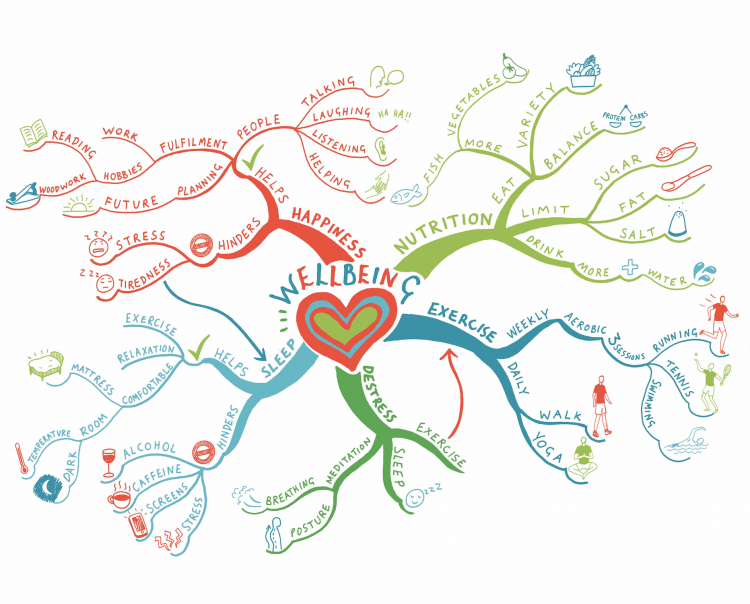 An illustration of a mind map
