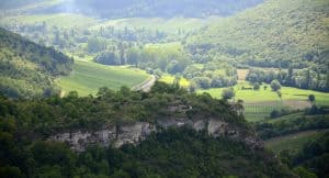 A view of the rolling hills in the stunning French countryside of Burgundy
