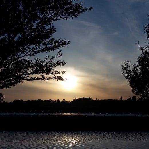 Sunset behind two trees on either side. A canal is seen in the foreground. Picture in article about living as a minimalist