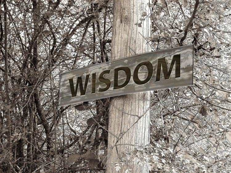 A wooden post in front of tree branches. A sign on the post reads 'Wisdom'