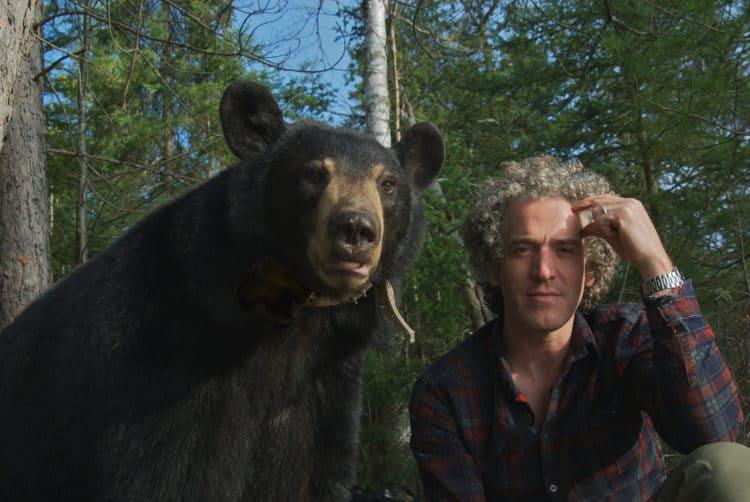 Gordon Buchanan sat alongside a Black Bear