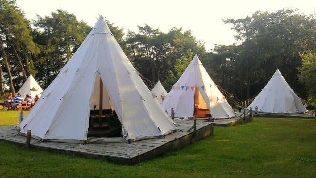 Pinewood Park Campsite
