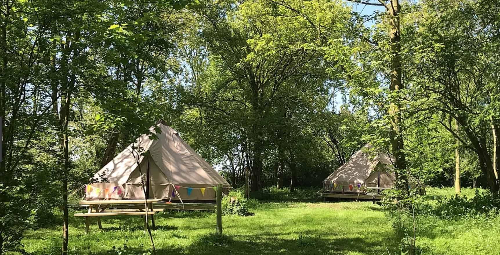 A bell tent hidden in the woods