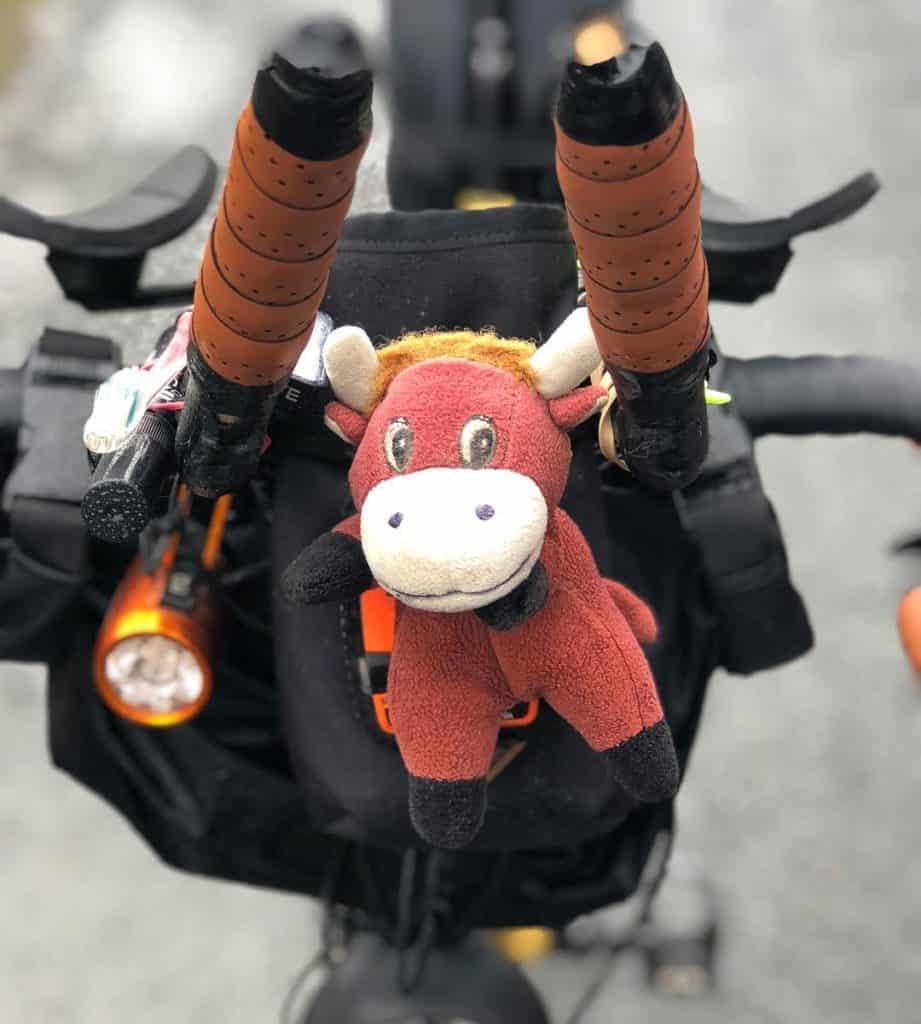 Adventurer Sean Conway's cow mascot