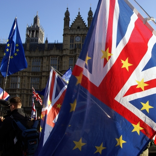 Brexit demonstration flags outside parliament