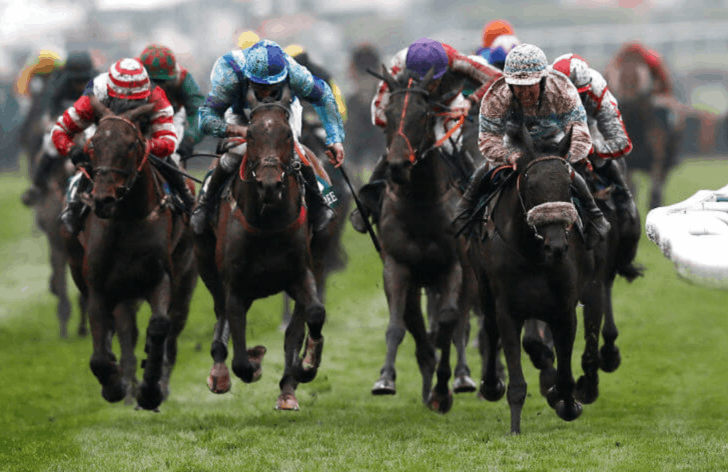 Horses compete in the Grand National