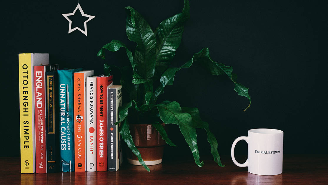 Books on a shelf for The MALESTROM's Christmas books gift guide