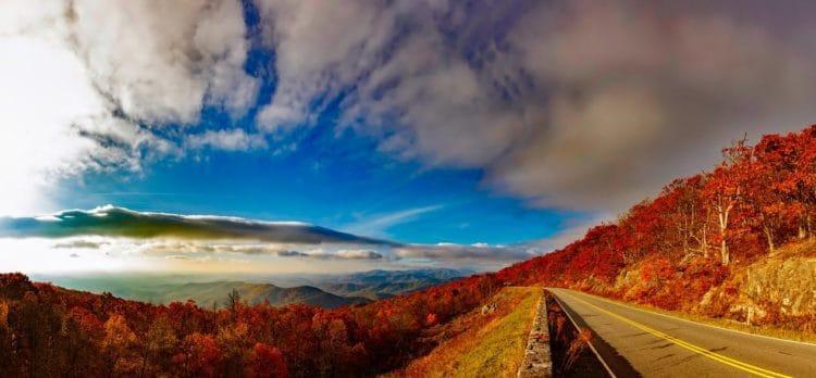 An autumnal blue sky over woodland