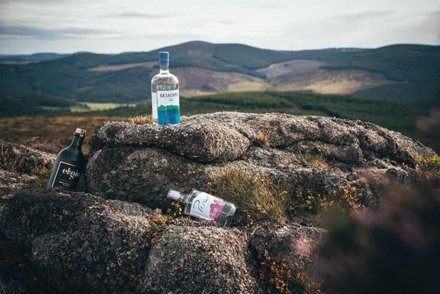 true origins gin festival